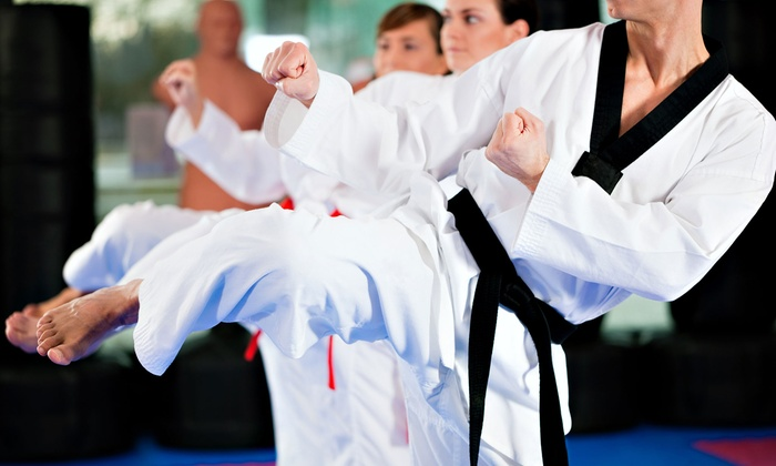 The Oriental Martial Arts College - Multiple Locations: $39 for One Month of Martial Arts and Self-Defense Classes at The Oriental Martial Arts College ($149 Value)