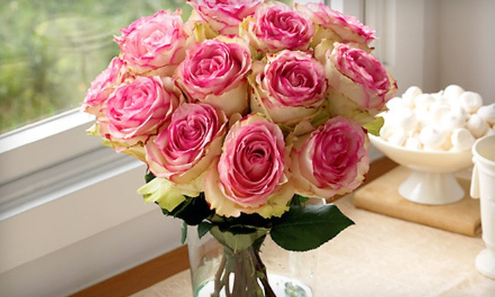 Organic Bouquet: Eco-Friendly Flowers, Plants, Gourmet Treats, and Gifts from Organic Bouquet (56% Off). Two Options Available.