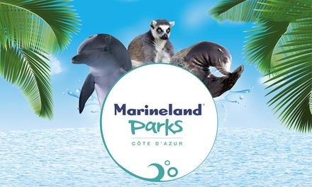 Antibes: habitación doble o cuádruple con desayuno y acceso al parque Marineland para 2 o 4 en el Hotel Marineland