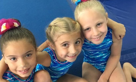 Gymnastics or Dance Classes at Tricks Gymnastics, Dance & Swim (Up to 68% Off). Four Options Available.