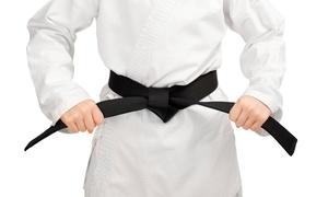 Bushido Karate Dojo, Inc: $49 for Two Months of Karate Classes with Uniform at Bushido Karate Dojo, Inc ($99 Value)