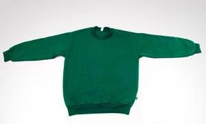 Buzo Escolar con Friza Verde