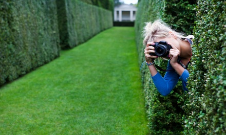 Photography: Beginners' or Intermediate Class from £29 at Frui (Up to 73% Off)