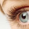 Up to 52% Off Eyelash Extensions at Lash Holic