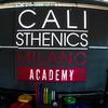 Fino a 15 lezioni di Calisthenics