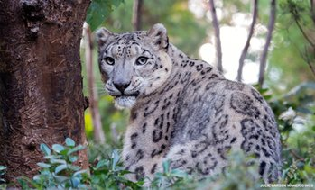 Up to 10% Off Kids' or Adults' Admission to Central Park Zoo
