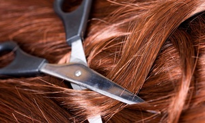 Artistic Hair Salon: Haircut and Conditioning with Optional Color Retouching or Partial Highlights at Artistic Hair Salon (Up to 63% Off)