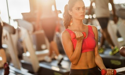 Up to 64% Off Full Gym Membership at Olympic Fitness Club
