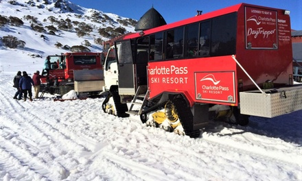 Charlotte Ski Pass: Up to 7 Nights for One Person with Breakfast and Transfers at Lucy Lodge-Charlotte Pass