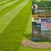 Grassology Ultra-Low Maintenance Grass Seed