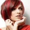 Up to 52% Off Haircut, Blowout and Color or Highlights