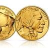 Buy 1 get 1 Free: Tribute $50 American Buffalo Gold Bullion Coin