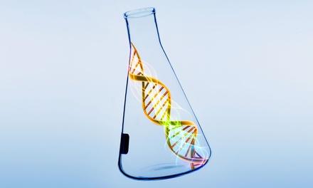 Test de intolerancias alimentarias vía ADN desde 69, 90 € en Click Salud
