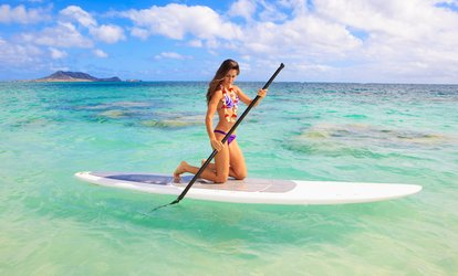 image for One- or Two-Hour Paddleboard Rental with Instruction from Miami Beach Paddleboard (Up to 67% Off)
