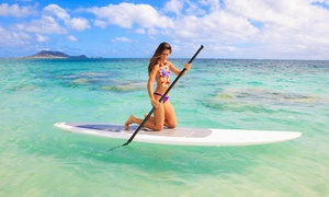 Miami Watersports LLC: One- or Two-Hour Paddleboard Rental with Instruction from Miami Beach Paddleboard (Up to 67% Off)