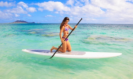 One- or Two-Hour Paddleboard Rental with Instruction from Miami Beach Paddleboard (Up to 66% Off)