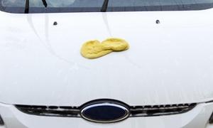 Peak Mart Car Wash: A Hand Car Wash with Interior Cleaning at Peak Mart & Car Wash (36% Off)