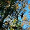 Ecopark Adventures Monteclin : accrobranche en famille