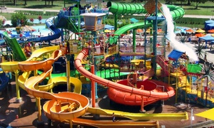 Pogo Pass - Dallas/Ft. Worth: $49.98 for One Dallas/Ft. Worth Pogo Pass with Admission to Cultural Attractions and Events ($124.95 value). Pay Nothing at Gate.