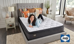 Sealy Pillow-Top Mattress Set
