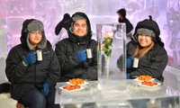 Child or Adult Entry to Chill Out Ice Lounge with Welcome Drink and BBQ at Chill Out