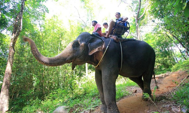 Phuket: Full Day Outdoor Activity 5