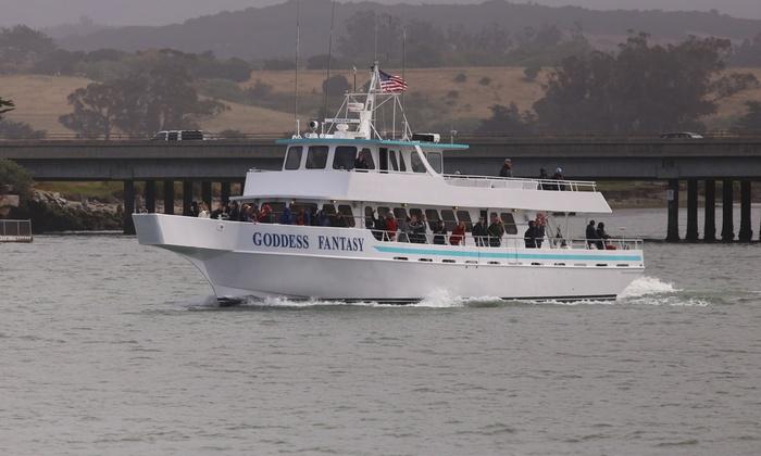 Sea Goddess Whale Watching - From $37 50 - MOSS LANDING,, CA