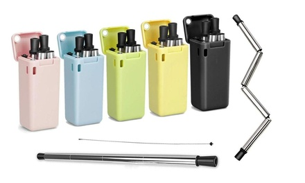 One or Two Foldable Stainless Steel Drinking Straws with Carrying Case