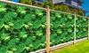 Artificial Grass Plant Walls