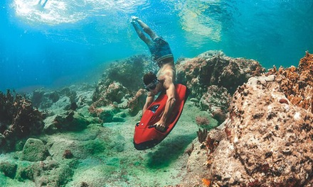 Hollywood Snorkeling Deals In Fl Groupon