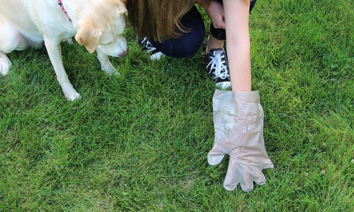Shmitt Dog Waste Bags 135 Pk Groupon Goods
