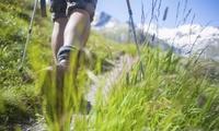 Geführte Outdoor-Wanderung mit Erlebnisvortrag für 1 bis 4 Personen mit Christian Seebauer (bis zu 53% sparen*)