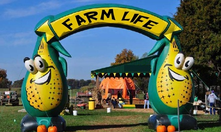 Admission Tickets to Farm Life Corn Maze (Up to 40% Off); Four Options Available