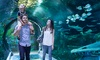Up to 10% Off Admission to SEA LIFE Orlando Aquarium