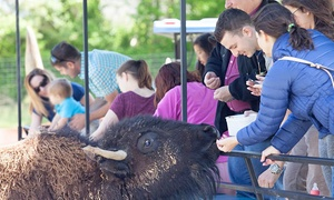 Roer's Zoofari: Entry for Two, Four, or Six with Animal Feed and Zoo Wagon Ride at Roer's Zoofari (Up to 42% Off)