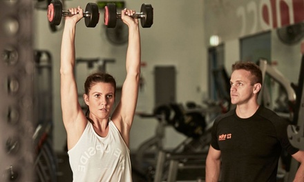 $139 Month Gym Membership + 8 Personal Training Sessions & Inbody Scan at Tribe Social Fitness Club, Taren Point
