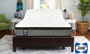 "Sealy 14"" Plush Mattress & Adjustable Base. Free White Glove Delivery."