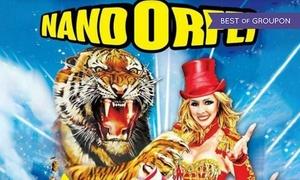 NandOrfei: Circo NandOrfei 27.04-1.05 a Bussolengo e 5-14.05 ad Affi: uno, 2 o 3 biglietti per adulti e bambini (sconto fino a 68%)