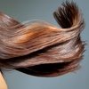 59% Off Organic Hair Color Touch-Ups
