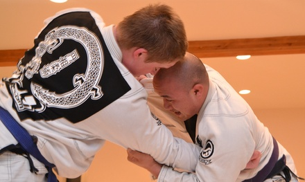 $34 for $135 Worth of Martial-Arts Lessons — Enso Jiu Jitsu