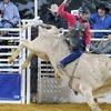 Up to 52% Off Rodeo Event