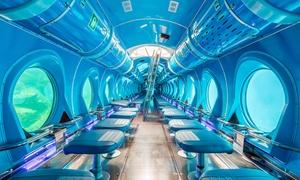 Submarine Adventure: Viaje en submarino para 2 o 4 personas desde 29,95 € con Submarine Adventure