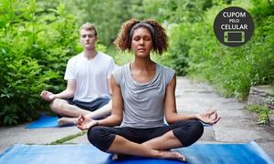 Centro Integrau: Centro Integrau – Jardim Goiás: 1 ou 2 meses de ioga Ashtanga Vinyasa Yoga