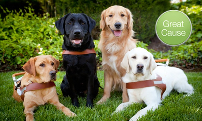 Guide Dogs for the Blind: $10 Donation to Guide Dogs for the Blind