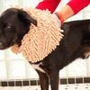 Ultra-Absorbent Microfiber Dog Bath Glove (1- or 2-Pack)