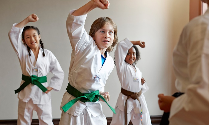 Mountain TKD - Short Pump: $20 for $200 Worth of Martial-Arts Lessons — Mountain TKD