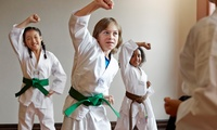 Eight Martial Arts Lessons for One or Two Children at Lee Matthews British Military Martial Arts, Multiple Locations