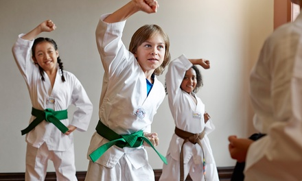 $49 for a Month of Twice Weekly Taekwondo Kids' Classes at Taekwondo at The Gymnastics Place ($100 Value)