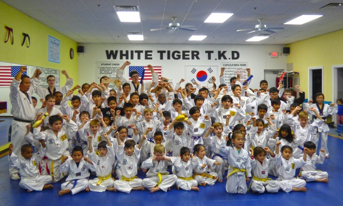 SJ Lee's White Tiger Martial Arts - Sachse: $49 for $159 Worth of Martial-Arts Lessons — SJ Lee's White Tiger Martial Arts
