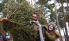 Holiday Time - Holiday Time: $40 for $70 Toward Real Christmas Trees at Holiday Time